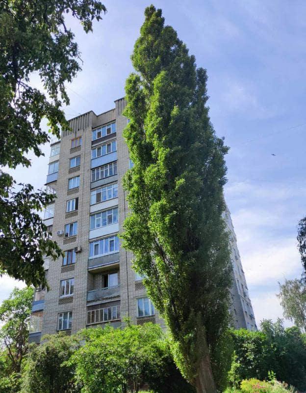 Дом 1 276 000 грн СН